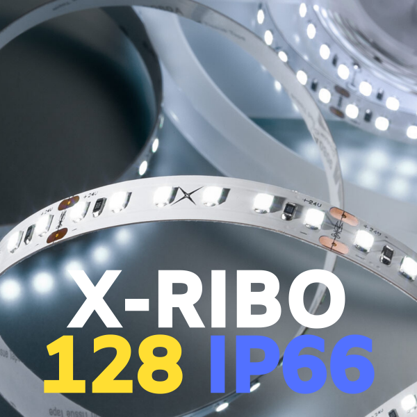 STRIP LED XRIBO IP66
