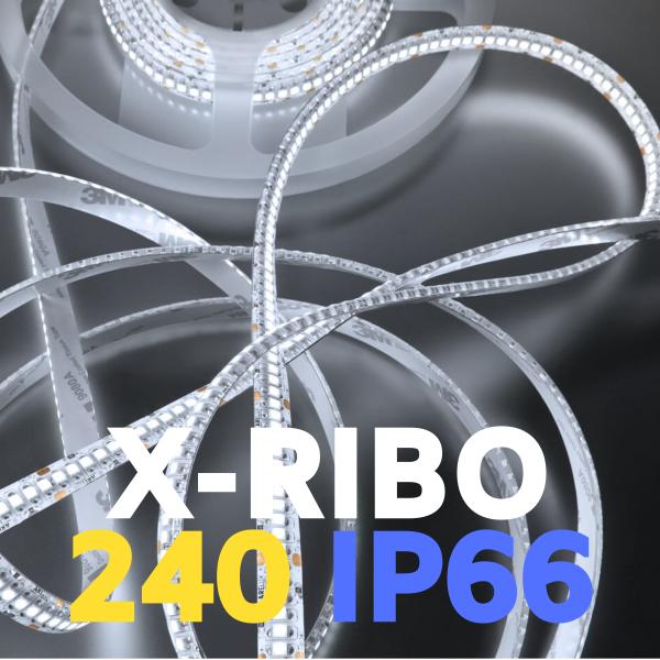 XRIBO 240 IP66
